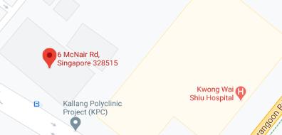 A screenshot of the upcoming Kallang BTO next to Kwong Wai Shiu Hospital