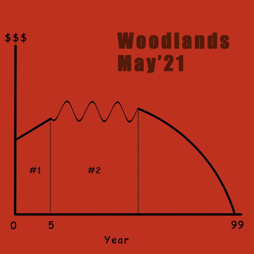 BTO lifespan of Woodlands May'21
